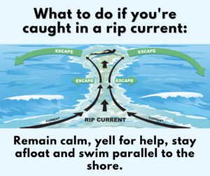 How to escape a rip current graphic